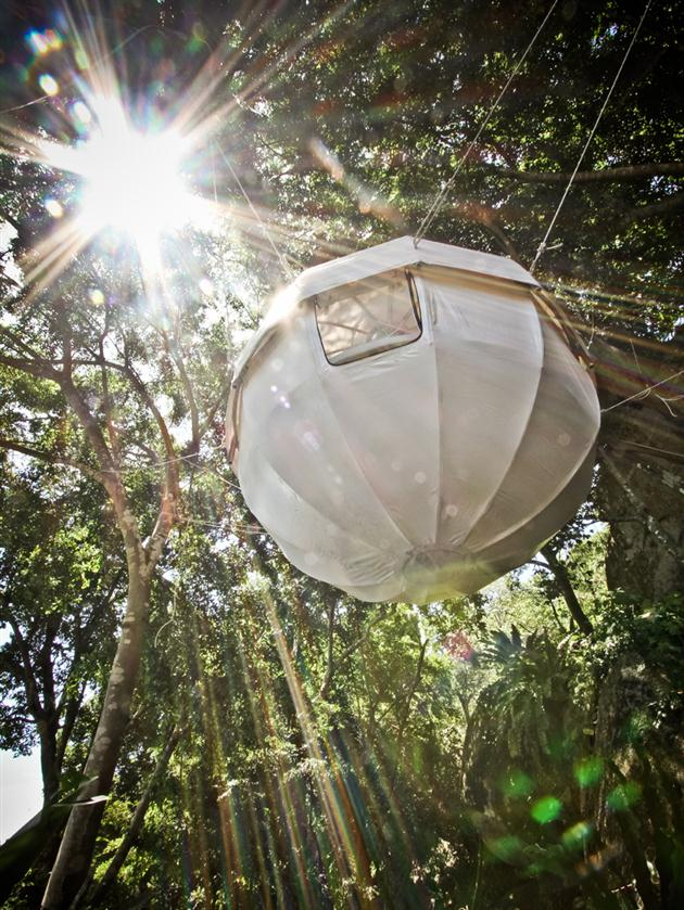 Cocoon Tent Tree House (2)