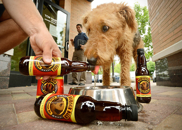 rdm 0053 dog beer