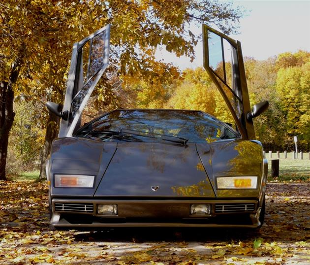 Lamborghini Countach Built In Mans Basement 13