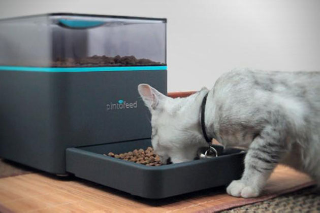 Pintofeed Automatic Pet Feeder 2