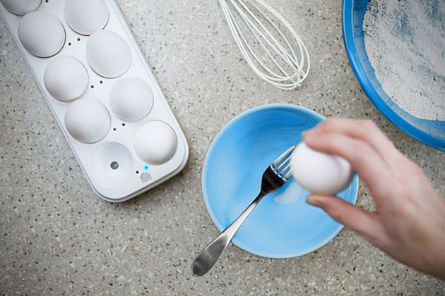 Egg Minder Smart Egg Carton 2