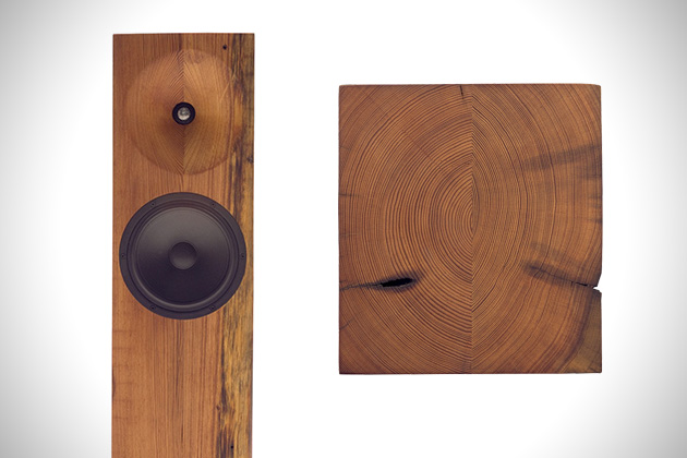 Beam Tower Speakers by Fern Roby 2