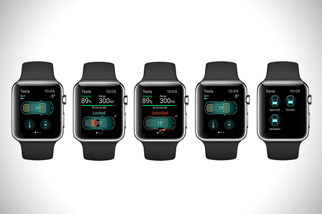 Tesla Apple Watch App 3