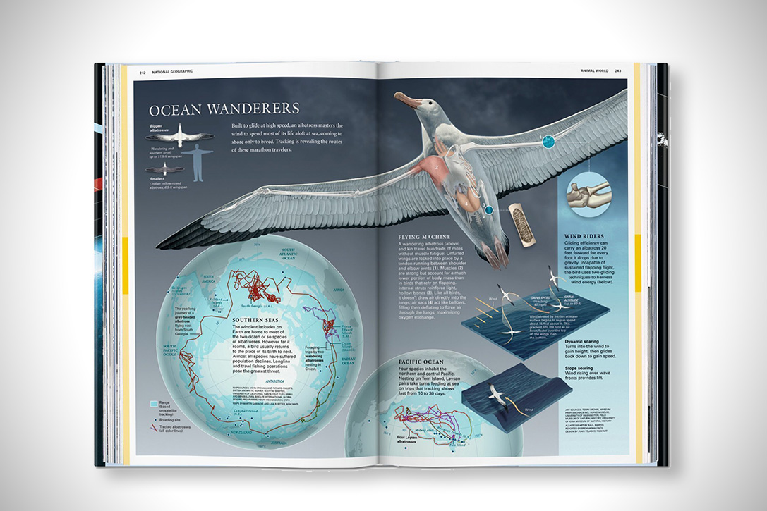 National Geographic Infographics Collection 5