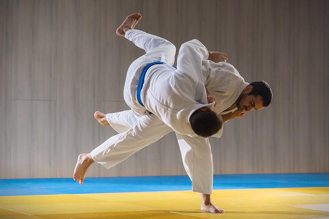 Martial art of gentle fist fighting