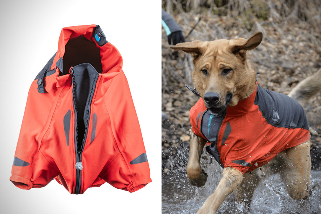 hot sale 47ae2 4bb94 Molosser Aegis All Weather Dog Jacket | HiConsumption