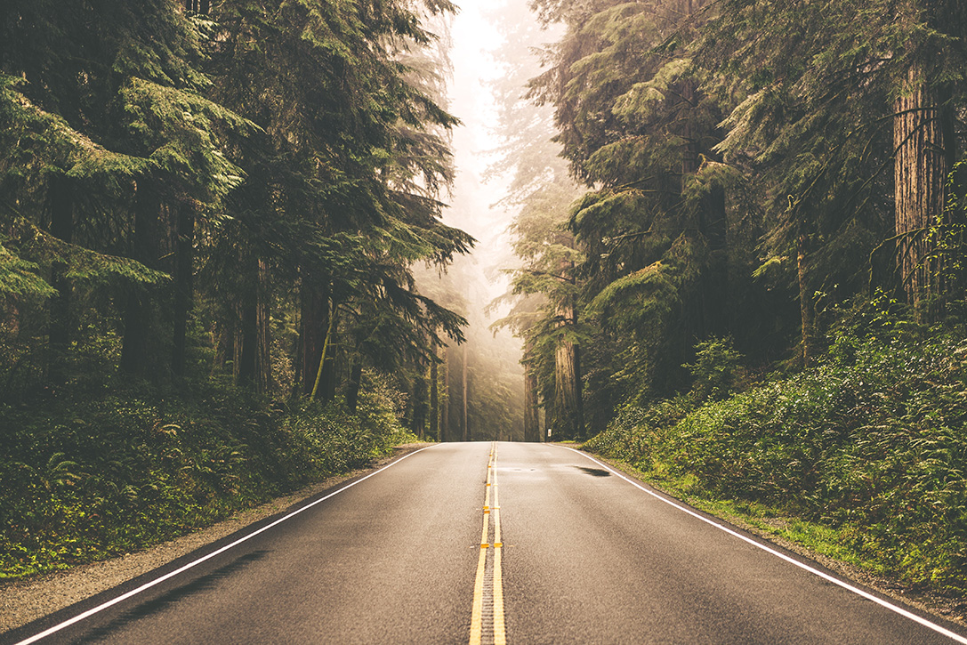 Ride Out 15 Best Motorcycle Roads In America Hiconsumption