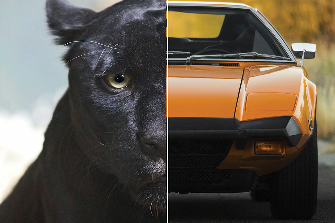 The Stories Behind 20 Iconic Car Model Names Hiconsumption